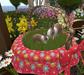 Cj easter cart planter with basket 014