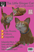 The Ginger Cat: LOLO Virtual Pet Cats - SERIES 4