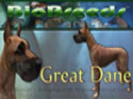 BioBreeds (BB) Dog FEMALE Great Dane STARTER (Boxed)