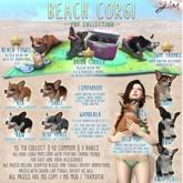 JIAN Beach Corgis BOX :: Wander Pup B&W