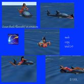 Shark Pillow for Ocean Water with animations(crate)