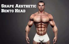 Shape for Aesthetic Bento  Head