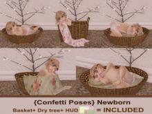 {Confetti Poses} Newborn