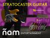 NIAM. Stratocaster Guitar