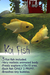 Japanese Koi Fish (Yellow)