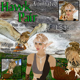 CKit Falconry Red-tail Hawk Pair 3.0 w/Perch