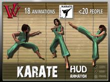 Karate Fighter HUD