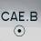 cae.b