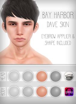 [Bay Harbor] Dave Skin - Tint 3