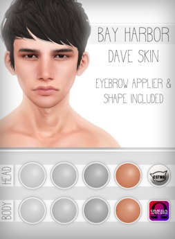 [Bay Harbor] Dave Skin - Tint 4
