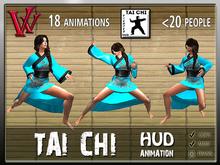 Tai Chi Fighter HUD
