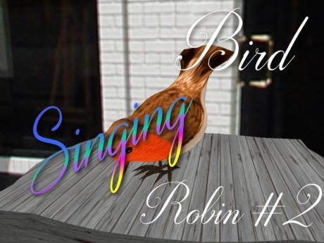 p-a-b bird robin #2