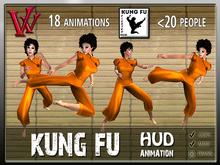 Kung Fu Animation HUD