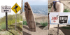 Sari-Sari - Beach Signs & Surfboard