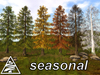 Larch season