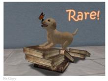 Book Animals  Caught It! RARE