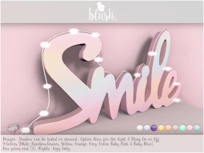 . BLUSH . Smile Logo Decoration With Lights Mesh
