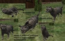 Animated Cat, 3 LI