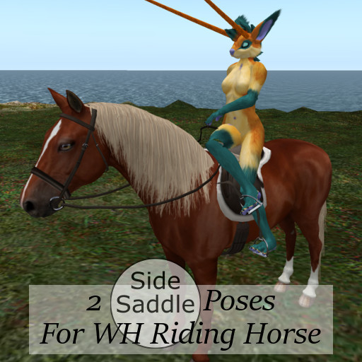 Sidesaddle Poses for WH Riding Horse