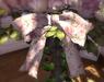 Cj happy mother's day iron planter 04