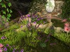 Msd   bed of flowers   ruins   lily sleeps 7 001