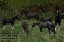 Animated Horses, low LI