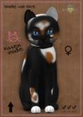 KittyCatS Box - Chateau Cat 3 Spot No. 2