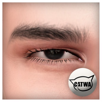 [Bay Harbor] Dave Eyebrows (Catwa) - SEPERATE FROM SKIN