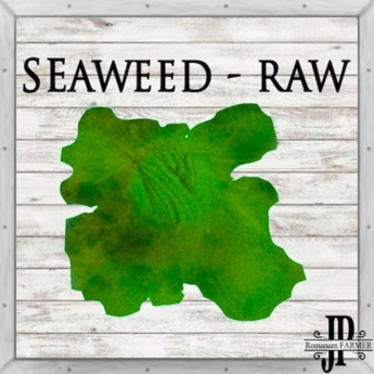 20x Salted Seaweed [G&S]