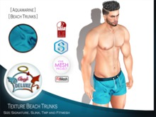 Angel DELUXE - Aquamarine Beach Trunks - FITMESH + TMP + SLINK + SIGNATURE