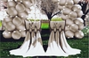 Aphrodite - Romantic Wedding chairs - Party MRS & MR Chairs- Groom & Bride chairs