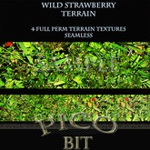 Wild Strawberries Summer Terrain Textures