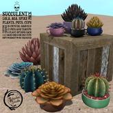 Schadenfreude Succulents Pack