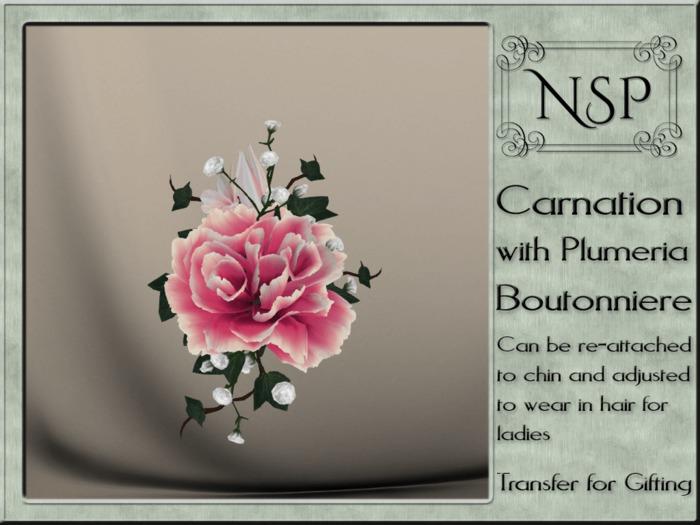 NSP Carnation & Plumera Boutonniere - Pink Ripple