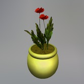 Two Blossom Flanders Mesh Poppy in Gold Pot