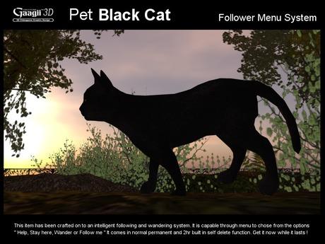 Gaagii - Pet Black Cat - Following system