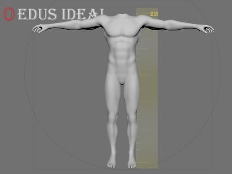 Ocacin Edus Ideal Male Mesh Body