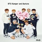 BTS Bumper and Gesture