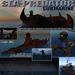 Sous-marin : Sea-Predator