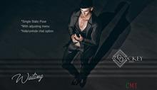 CKEY Poses - Waiting (Single Male Static Pose)