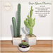 {what next} Oasis Bloom Planters  - Set of 3