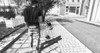"""[DB]Poses - """"daily walk"""""""