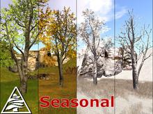 Poplar aspen SEASONAL - 2 LI - C/M