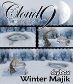 MG - Cloud 9 Winter Skybox - 60x30x24