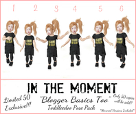.In The Moment.Families. ~ Blogger Basics Too ~ Limited 50 Pack