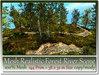 Mesh Realistic Forest River Scene 144 Prim=38x32m Size copy-mod