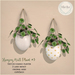 {what next} Wall Hanging Plant 3