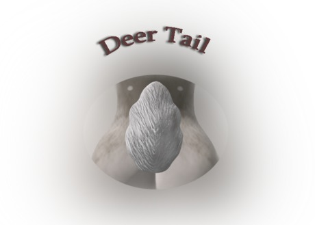 Deer Tail white