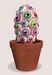 Eyeball cactus multi