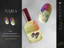 FingerNail - Nails Multicolor / Ongles Multicolor Papillon - Peny